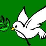 paloma paz